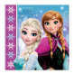 Salvete dvoslojne Disney Frozen 33x33 cm 20/1