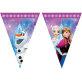 Rođendanske zastavice Disney Frozen