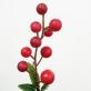 Grančica sa crvenim bobicama - ukras