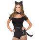 Set mačka